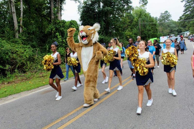 Taylortown Day Parade 10
